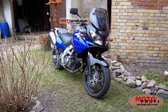 Suzuki V-Strom 650 2004 photo