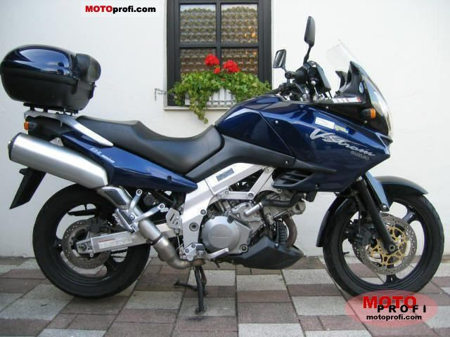 Fabulous Suzuki Dl 1000 V Strom 2002 Specs And Photos Squirreltailoven Fun Painted Chair Ideas Images Squirreltailovenorg