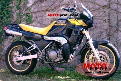 Yamaha TDR 250 1988 photo