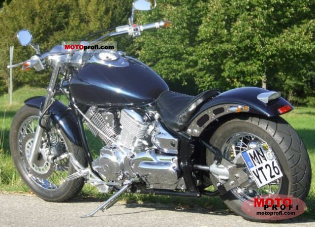 Yamaha XVS 1100 Drag Star 2001 photo