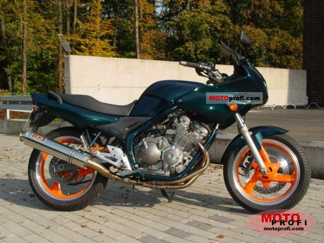Yamaha XJ 600 S Diversion 1996 photo