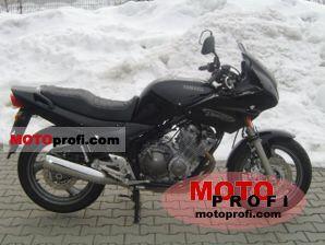 Yamaha XJ 600 S Diversion 2002 photo