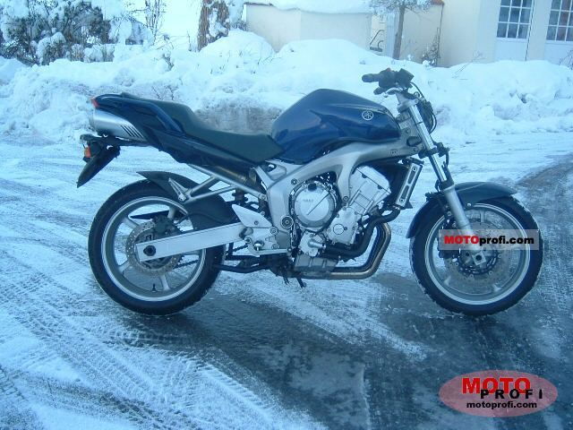 Yamaha FZ 6 2004 photo