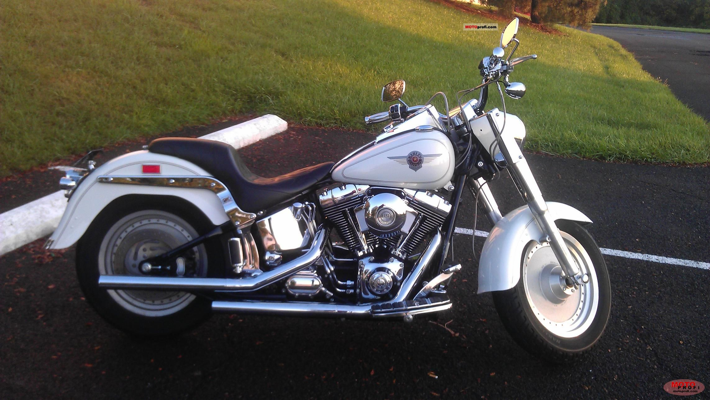 Harley-Davidson Fat Boy Injection 2001 photo