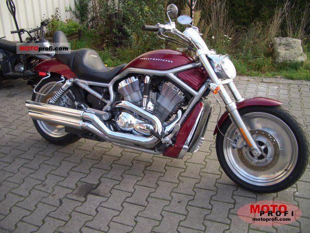 Harley-Davidson VRSCA V-Rod 2004 photo