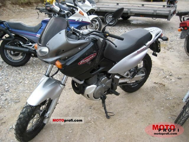 suzuki xf 650 freewind 1998 specs and photos. Black Bedroom Furniture Sets. Home Design Ideas
