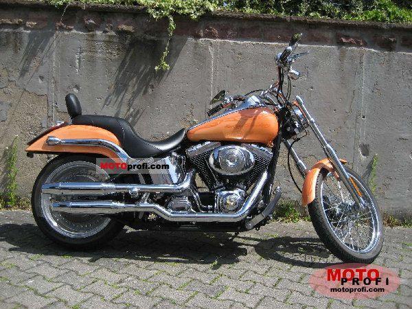 Harley-Davidson Softail Deuce Injection 2001 photo