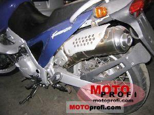 http://motoprofi.com/imgs/a/a/g/h/y/bmw_f_650_st_1998_14_lgw.jpg