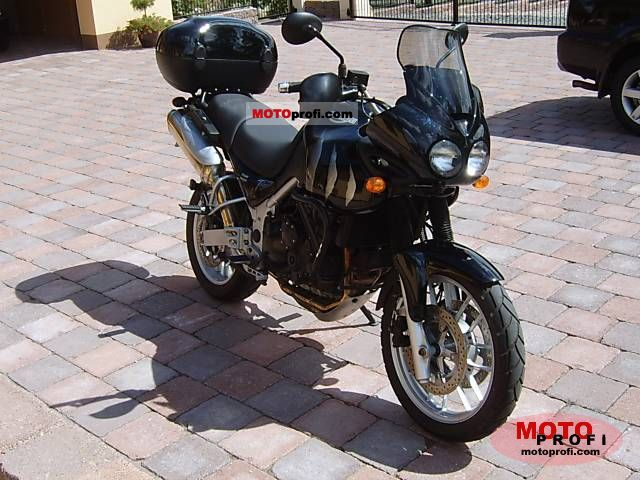 Triumph Tiger 2006 photo