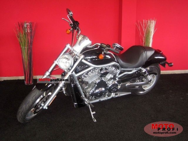 Harley-Davidson VRSCAW  V-Rod 2007 photo