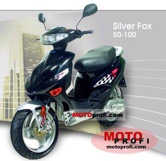 Adly Silver Fox 100 2008 photo