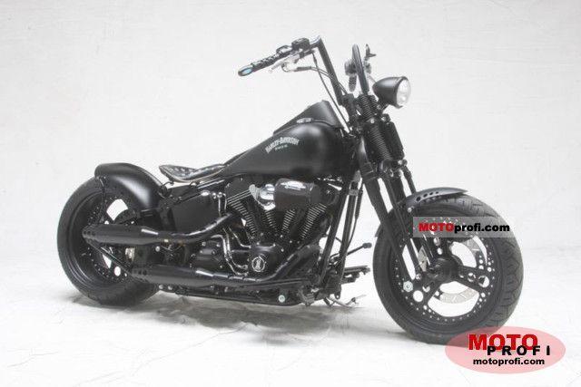 Harley-Davidson FLSTC Softail 2008 photo