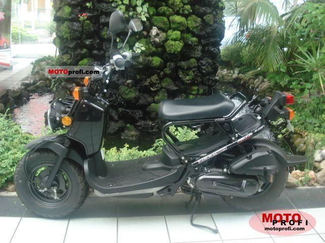 Honda Zoomer 2008 photo