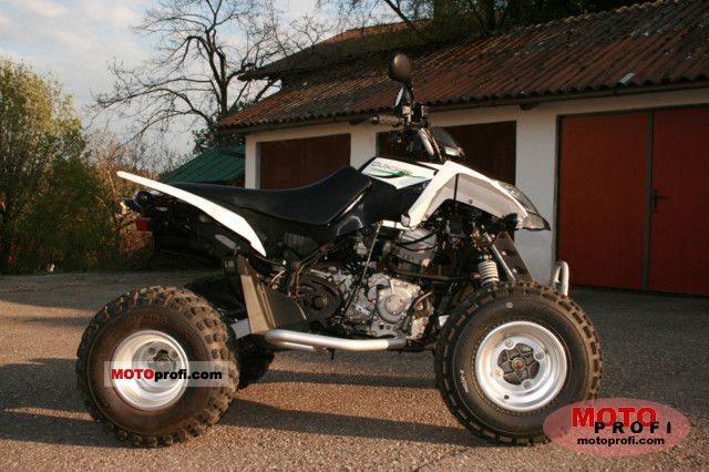 Arctic Cat 300 DVX 2009 photo