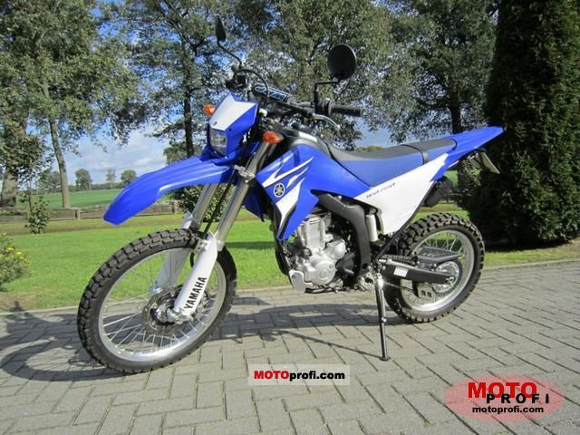 Yamaha WR250R 2010 photo