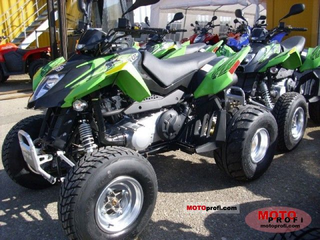 Arctic Cat 300 DVX 2011 photo